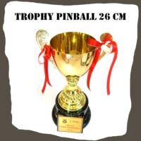 Gold Trophy Pinball 26 cm
