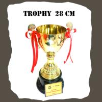 Trophy Pinball 28 cm